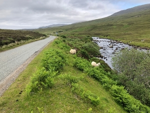 Scotland Roads and Views - June19